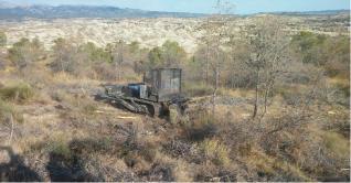 La Consejería declara la guerra a las plagas para salvar los pinares