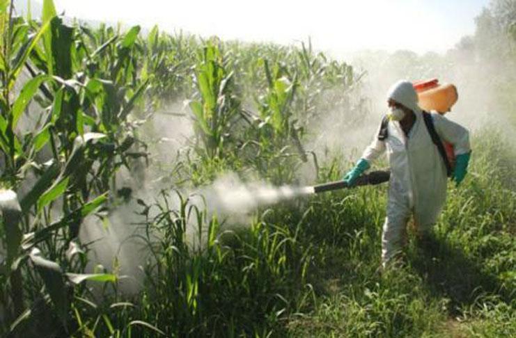 Andalucía participa en un proyecto europeo para control de enfermedades cultivos