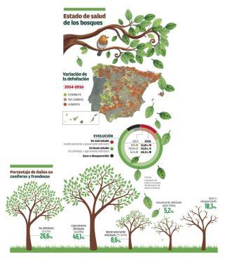 Casi 200.000 hectáreas de monte están en riesgo por culpa de plagas e incendios