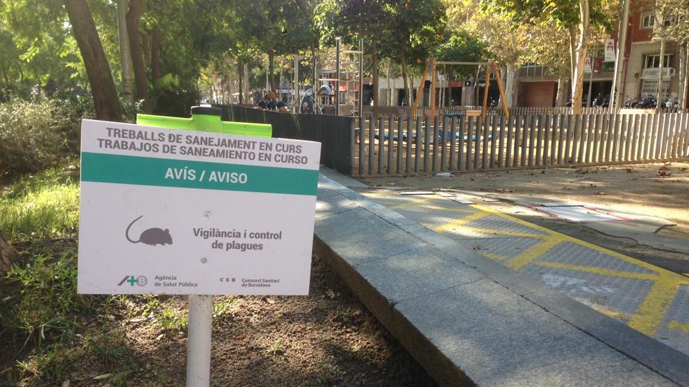 Una plaga de ratas amenaza un parque infantil del Eixample de Barcelona