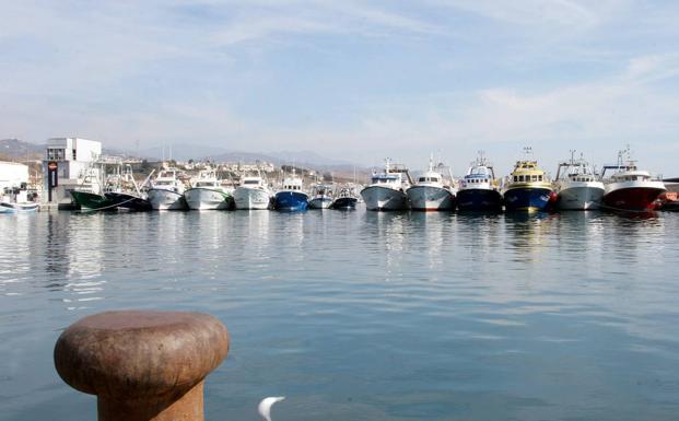 El 80% de la flota pesquera malagueña, amarrada a causa del temporal de viento y olas