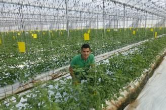 El control biológico de plagas se convierte en una alternativa sostenible