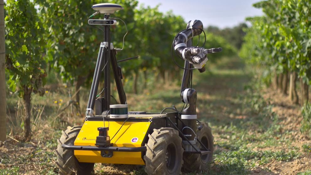 Prueban un robot para cuidar las viñas y controlar plagas
