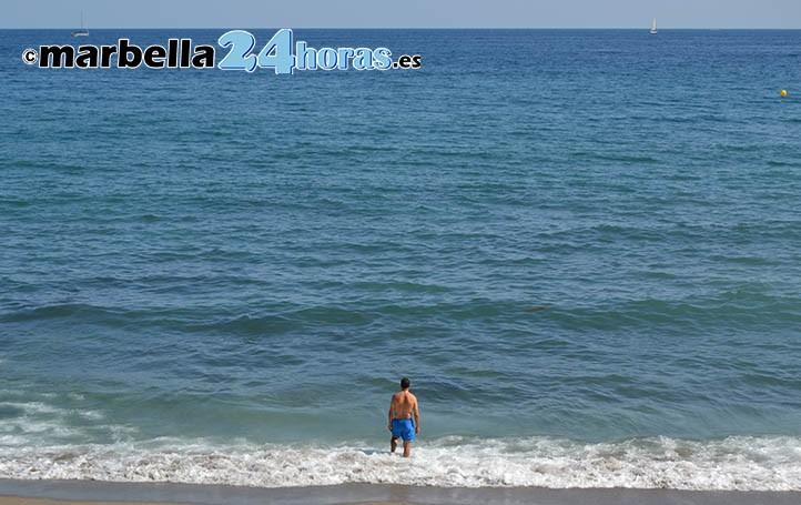 Las playas de Marbella siguen llenas de medusas y hay zonas cerradas al baño