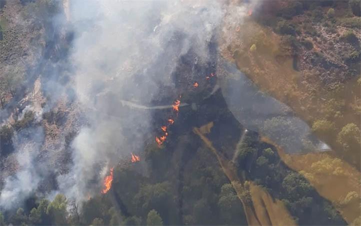 Declarado un incendio forestal en el paraje de La Montúa en Marbella