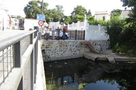 El PSOE alerta de que siguen muriendo patos en El Salto del Agua