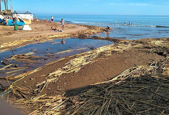 IU denuncia el mal estado de las playas pese a privatizarse el mantenimiento